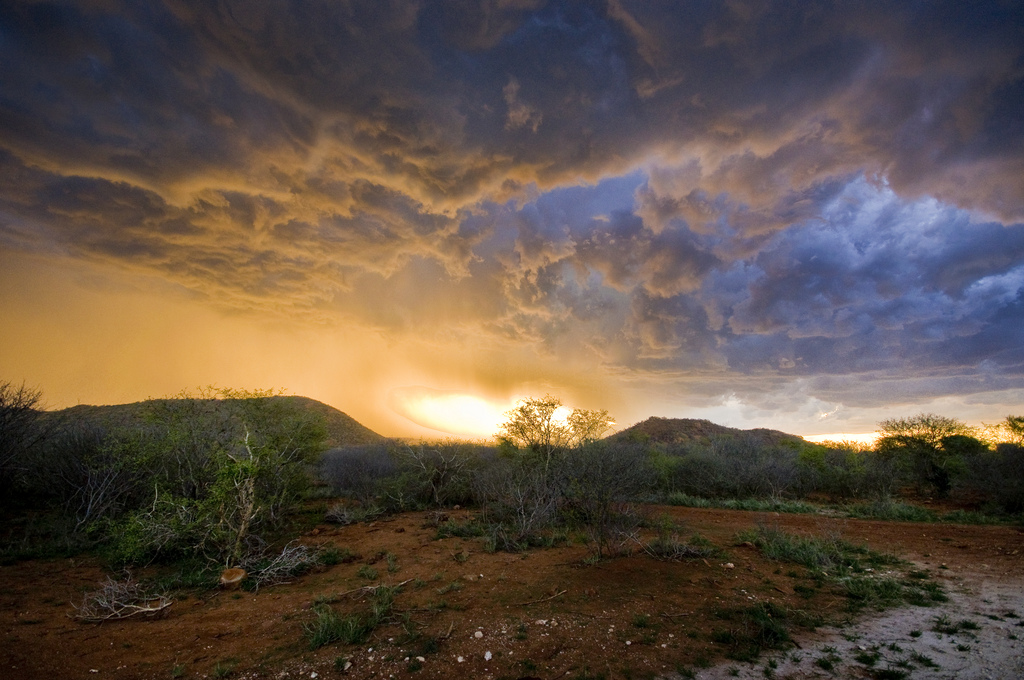 South Africa Storm Rising
