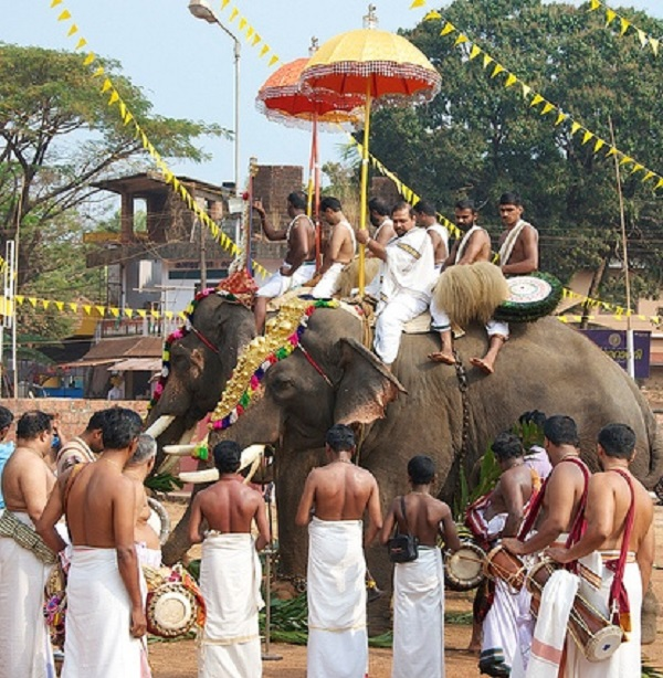 Elephant Festival, Kerala, India