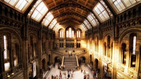 The great exhibitions of the British Museum in London for 2013