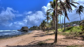 Discover Your Own Barbados