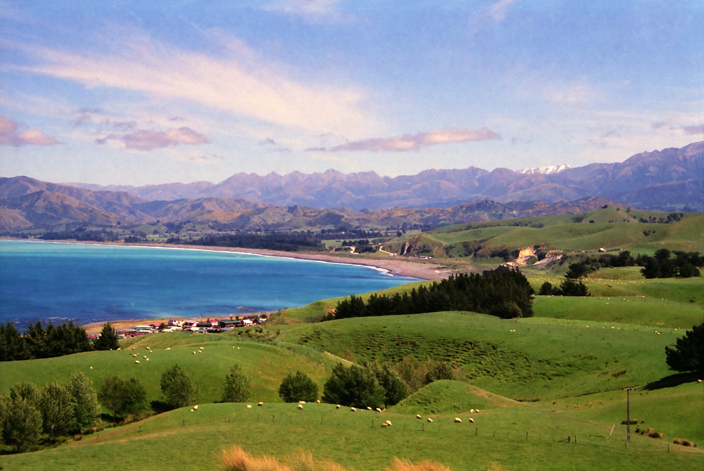 Nature and Whale Watching in Kaikoura New Zealand